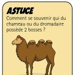 Astuces 02